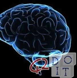मस्तिष्क में कल्पना की मोटर