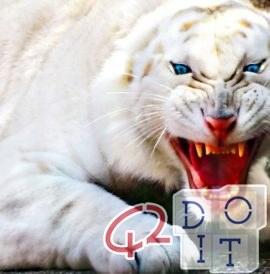 白虎が動物園のガーディアンを殺す
