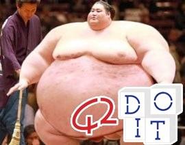 rules sumo