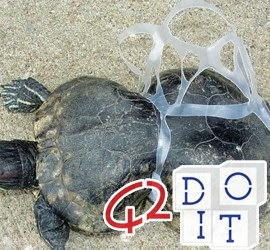 plástico irresistível para tartarugas