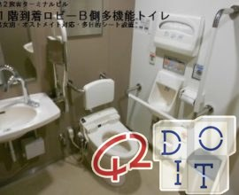 Japanese, technological, toilets, Toto, Narita, Airport,